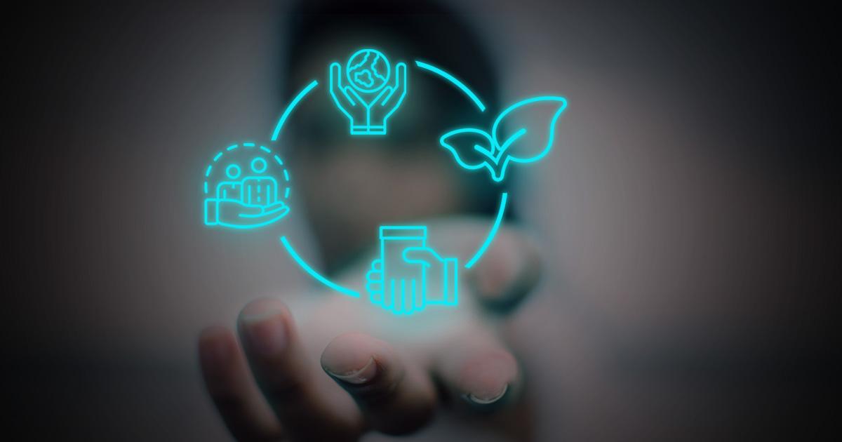 Les Cooperatives De Consum Són El Futur I En Aquest Article T'expliquem Per Què